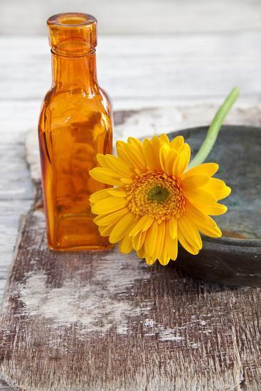Gerbera, Flower, Orange, Glass Bottle-Andrea Haase-Photographic Print