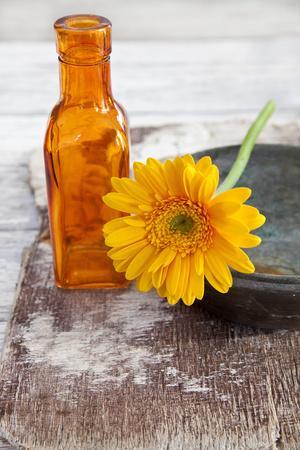 https://imgc.artprintimages.com/img/print/gerbera-flower-orange-glass-bottle_u-l-q11vxmx0.jpg?p=0
