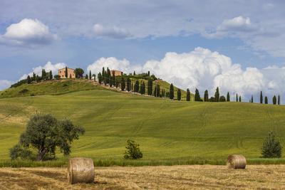 Europe, Italy, Tuscany, Landscape in Le Crete