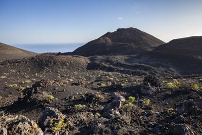 Volcano Landscape Between the Two Volcanoes San Antonio and Teneguia, La Palma, Spain