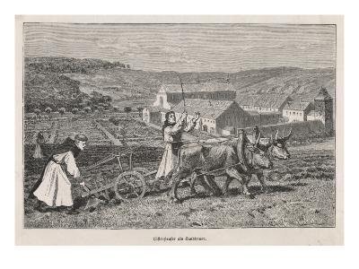 German Monks Farming--Giclee Print