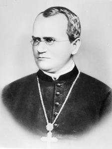 Portrait of Gregor Johann Mendel (b/w photo) by German Photographer