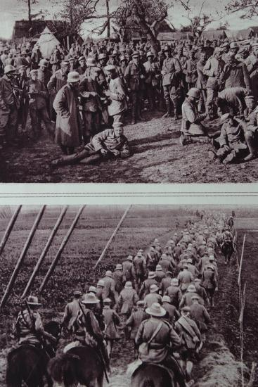 German Prisoners Captured by the Australians, 1914-18--Photographic Print