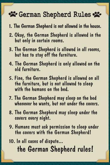 German Shepherd House Rules--Art Print