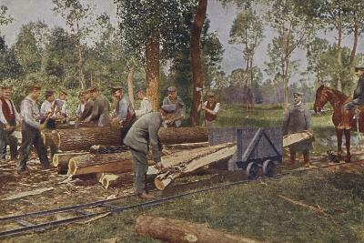 German Troops Processing Timber for Use in Trenches and Shelters, World War I, 1914-1916--Photographic Print