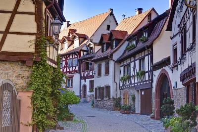 Germany, Baden Wurttemberg, Odenwald (Region), Bergstra?e (Region), Weinheim (Town-Udo Siebig-Photographic Print