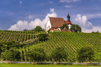Germany, Bavaria, Lower Franconia, Mainfranken, Volkach, Pilgrimage Church Maria in the Vineyard-Udo Siebig-Photographic Print