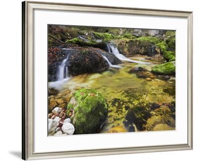 Germany, Bavaria, Natural Reserve Schwarzbach, Autumn, Moss, Brook, Waterfall-Rainer Mirau-Framed Photographic Print