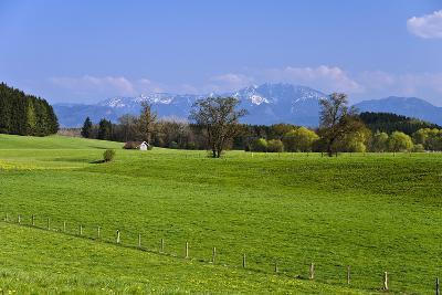 Germany, Bavaria, Upper Bavaria, Pfaffenwinkel (Region), Antdorf-Udo Siebig-Photographic Print