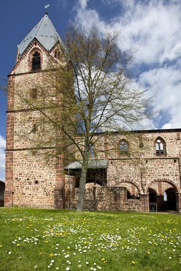 Germany, Hessen, Northern Hessen, Schwalmstadt-Treysa, Cemetary Church, Flower Meadow, Spring-Chris Seba-Photographic Print