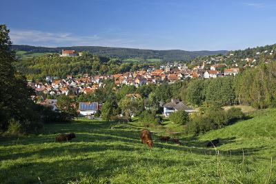 Germany, Hessen, Northern Hessen, Spangenberg, Townscape, Meadow, Cattle, Bison Herd, Grazing-Chris Seba-Photographic Print