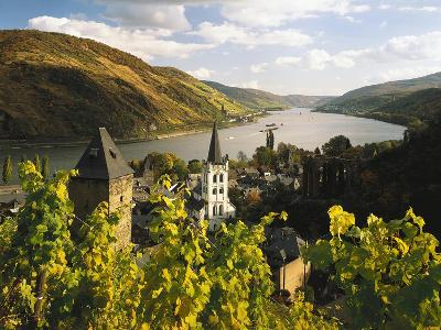 Germany, Rhineland-Palatinate, Bacharach, Church 'St. Peter', Castle 'Stahleck'-Thonig-Photographic Print