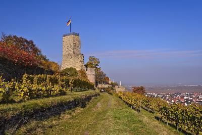 Germany, Rhineland-Palatinate, Palatinate, German Wine Route, Wachenheim, Ruin Wachtenburg-Udo Siebig-Photographic Print