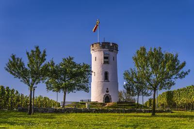 Germany, Rhineland-Palatinate, Rheinhessen Region (Rhine-Hesse), Nierstein, Niersteiner Warte-Udo Siebig-Photographic Print