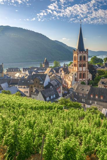 Germany, Rhineland Palatinate, River Rhine-Alan Copson-Photographic Print