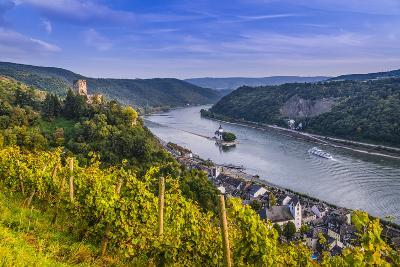 Germany, Rhineland-Palatinate, Upper Middle Rhine Valley, Kaub, Rhine Valley-Udo Siebig-Photographic Print