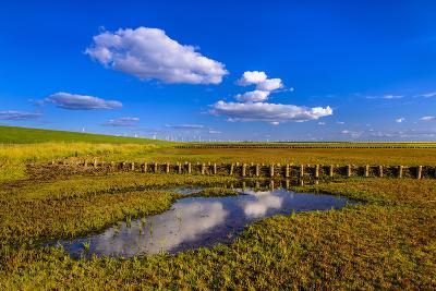 Germany, Schleswig-Holstein, North Frisia, North Frisian Marsh, Ockholm-Udo Siebig-Photographic Print