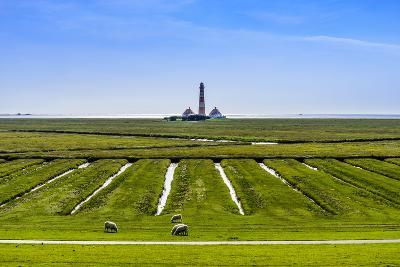 Germany, Schleswig-Holstein, North Frisia, Peninsula Eider (River)Stedt, Westerhever-Udo Siebig-Photographic Print