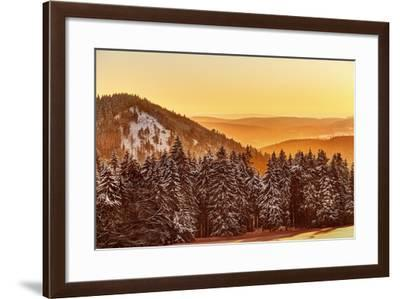 Germany, Thuringia, Gehlberg, Schm?cke, Mountain Silhouettes, Spruces, Snow, Back Light-Harald Schšn-Framed Photographic Print