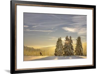 Germany, Thuringia, Neustadt / Rennsteig, Cross-Country Skier, Trees, Sun, Snow-Harald Schšn-Framed Photographic Print