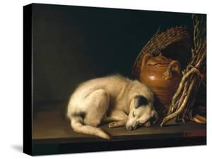 A Sleeping Dog with Terracotta Pot, 1650 by Gerrit or Gerard Dou