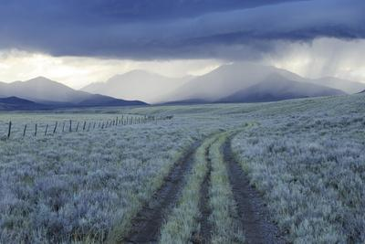 Rain Showers over Sagebrush-Steppe at the Foot of the Sawtooth Mountains