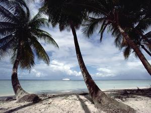 Cruise Ship Off West Coast of Tobago, Caribbean by Gerry Ellis