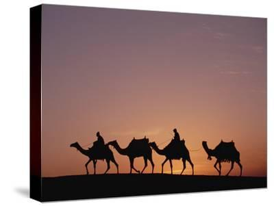 Egyptians Riding Camels across Desert Near the Pyramids of Giza at Sunset, Cairo, Egypt