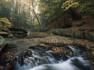 Small Waterfall on Hunting Creek in Fall, Catoctin Mountain Park, Maryland by Gerry Ellis