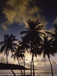 Sunrise at La Sagesse Bay over Marquis Point, Grenada by Gerry Ellis