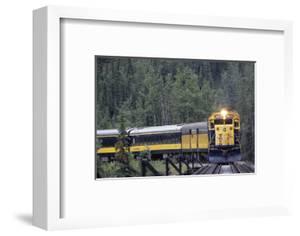 Alaska Railroad Train, Denali National Park, Alaska, USA by Gerry Reynolds