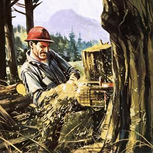 Lumberjack by Gerry Wood