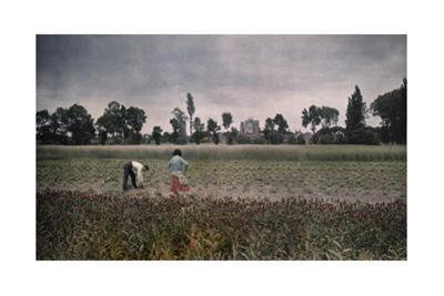 A Farmer Works the Fertile Landscape That Looks Out on Clery Church by Gervais Courtellemont