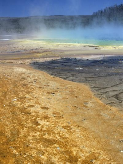 Geyserite Terraces Coloured by Algal Mats, Midway Geyser Basin, Unesco World Heritage Site-Tony Waltham-Photographic Print