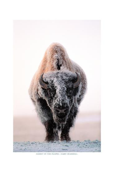 Ghost of the Plains-Gary Crandall-Premium Giclee Print