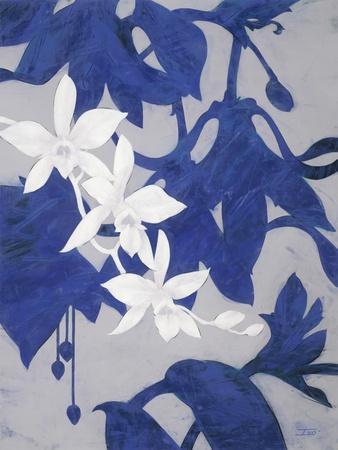https://imgc.artprintimages.com/img/print/ghost-orchid-2_u-l-pxkvgs0.jpg?artPerspective=n