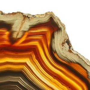 Cadmium Orange Agate A by GI ArtLab