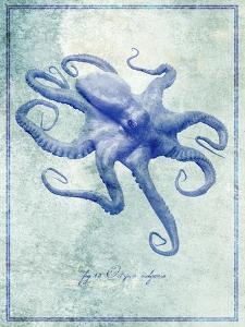 Octopus B by GI ArtLab