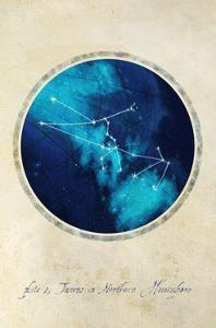 Taurus by GI ArtLab