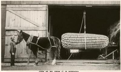 Giant Ear of Corn with Plow Horse, Nebraska