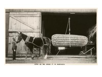 Giant Ear of Corn with Plow Horse, Nebraska--Art Print