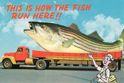 Giant Fish on Flat Bed Truck