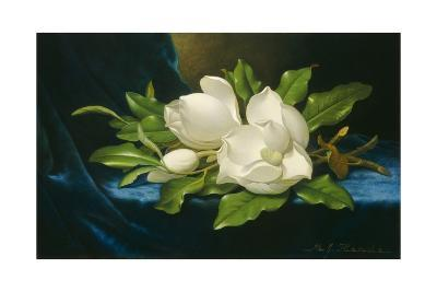 Giant Magnolias on a Blue Velvet Cloth, 1890-Martin Johnson Heade-Giclee Print