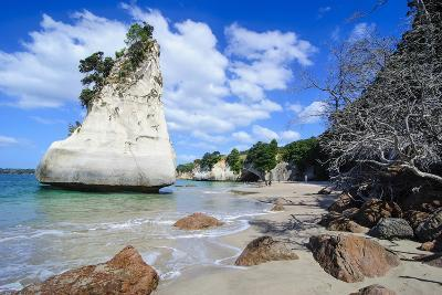 Giant Rock on the Sandy Beach of Cathedral Cove, Coromandel, North Island, New Zealand, Pacific-Michael Runkel-Photographic Print