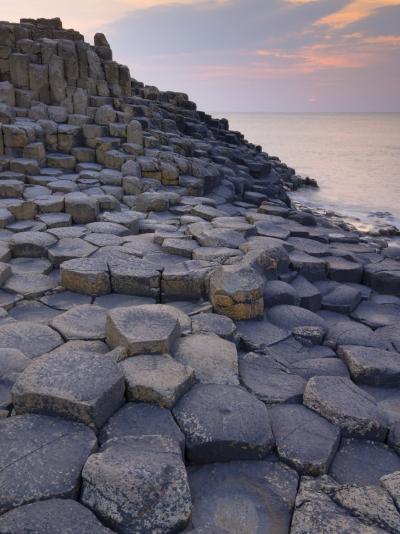 Giant's Causeway Near Bushmills, County Antrim, Ulster, Northern Ireland, UK-Neale Clarke-Photographic Print