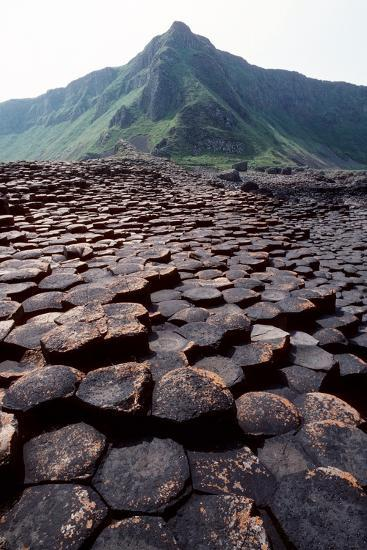 Giant's Causeway-Georgette Douwma-Photographic Print