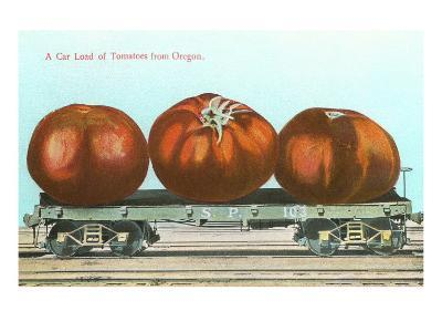 Giant Tomatoes on Flat Bed--Art Print