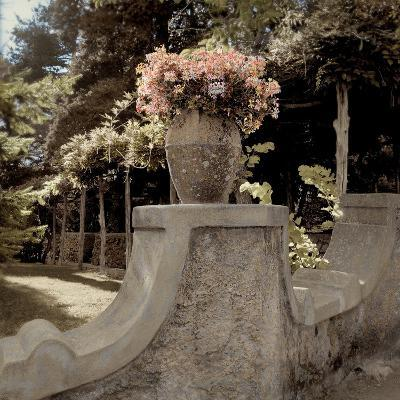Giardini Italiano #8-Alan Blaustein-Photographic Print