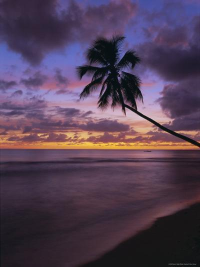 Gibbes Bay at Sunset, Barbados, West Indies, Caribbean, Central America-Gavin Hellier-Photographic Print