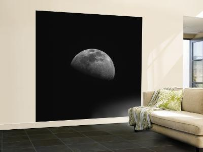 Gibbous Moon--Wall Mural – Large